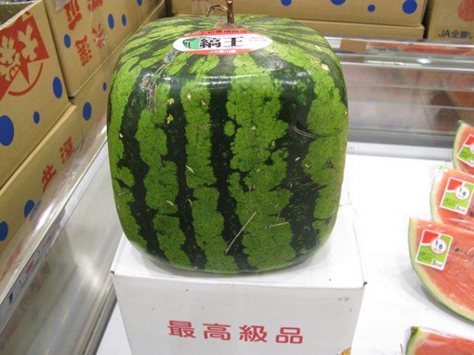 квадратный арбуз Японии